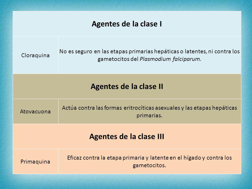 Agentes de la clase I Cloraquina No es seguro en las etapas primarias hepáticas o latentes, ni contra los gametocitos del Plasmodium falciparum. Agent