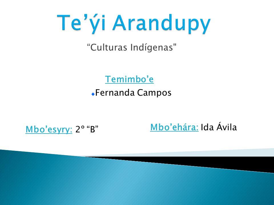 En el Paraguay encontramos varias familias lingüísticas, provenientes de diferentes lugares como Siberia, Australia y Polinesia.