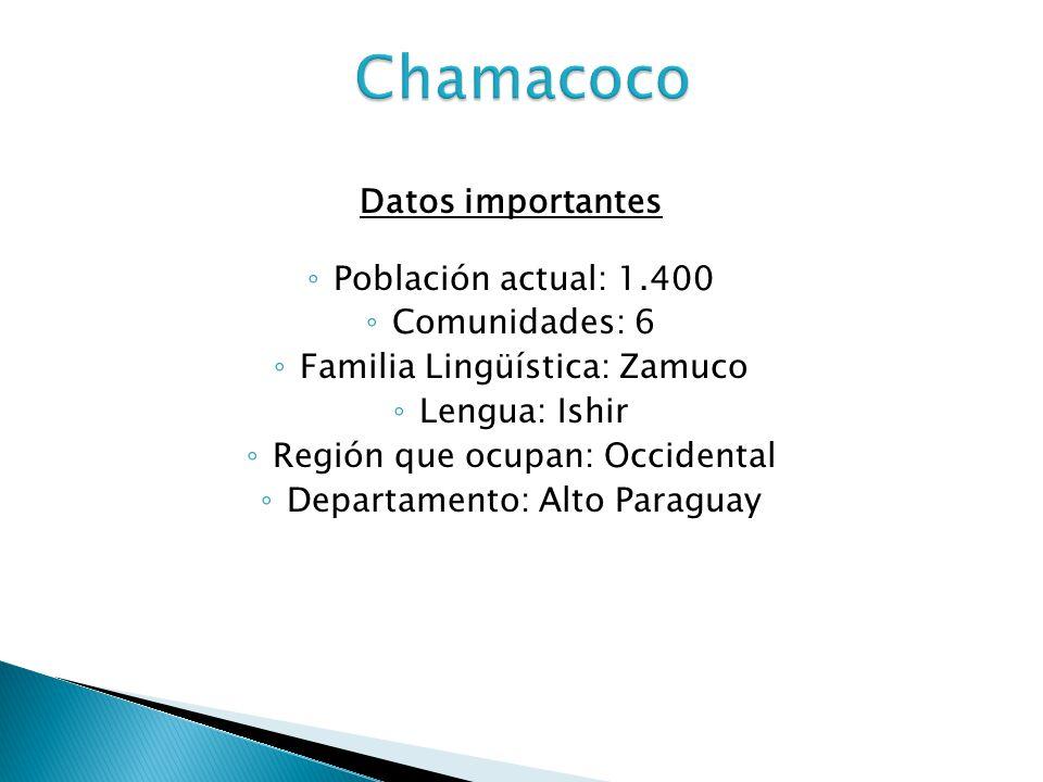 Datos importantes Población actual: 1.400 Comunidades: 6 Familia Lingüística: Zamuco Lengua: Ishir Región que ocupan: Occidental Departamento: Alto Pa
