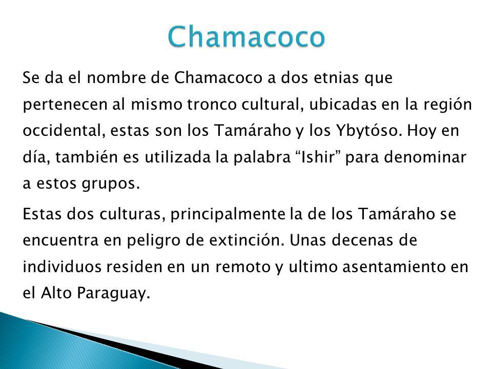 Se da el nombre de Chamacoco a dos etnias que pertenecen al mismo tronco cultural, ubicadas en la región occidental, estas son los Tamáraho y los Ybyt
