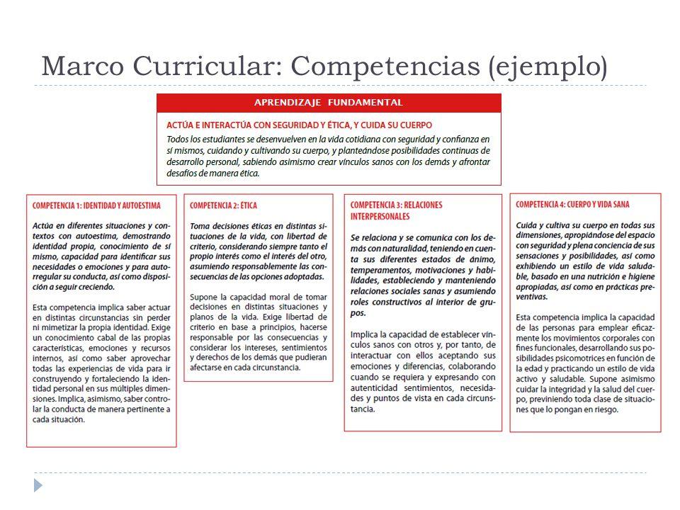 Marco Curricular: Competencias (ejemplo)
