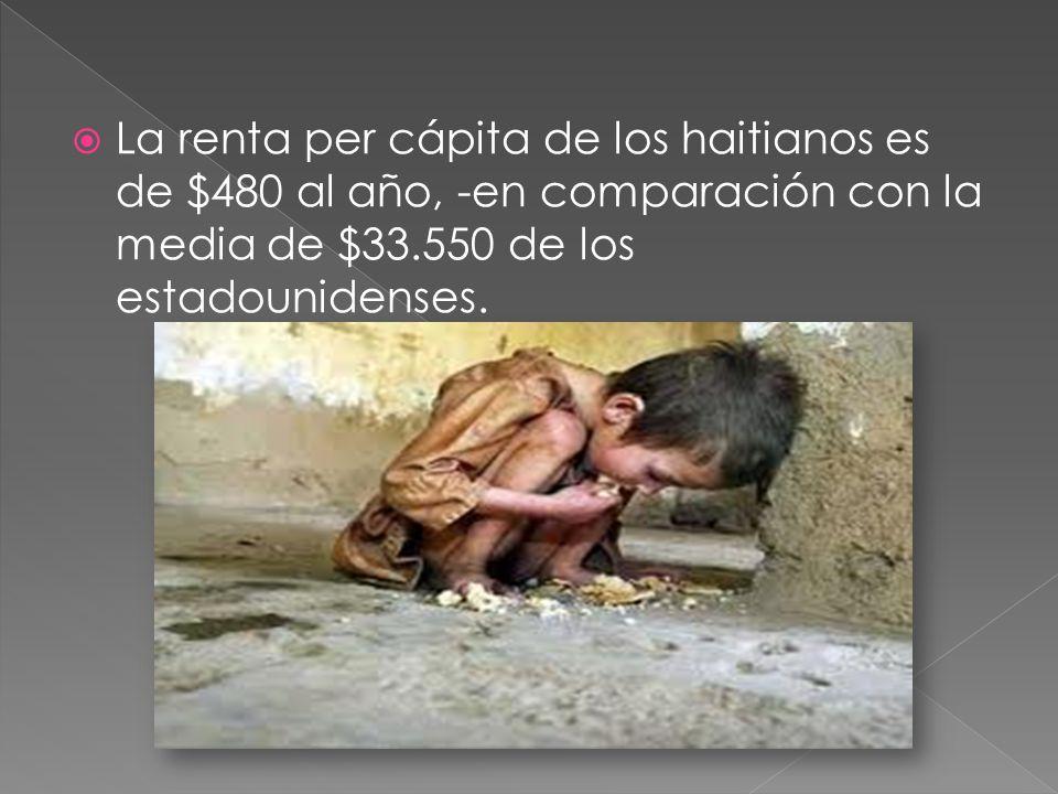 El rápido crecimiento demográfico agrava los problemas económicos de Haití, cuya población aumentó de 5 a 8 millones en los últimos 20 años.