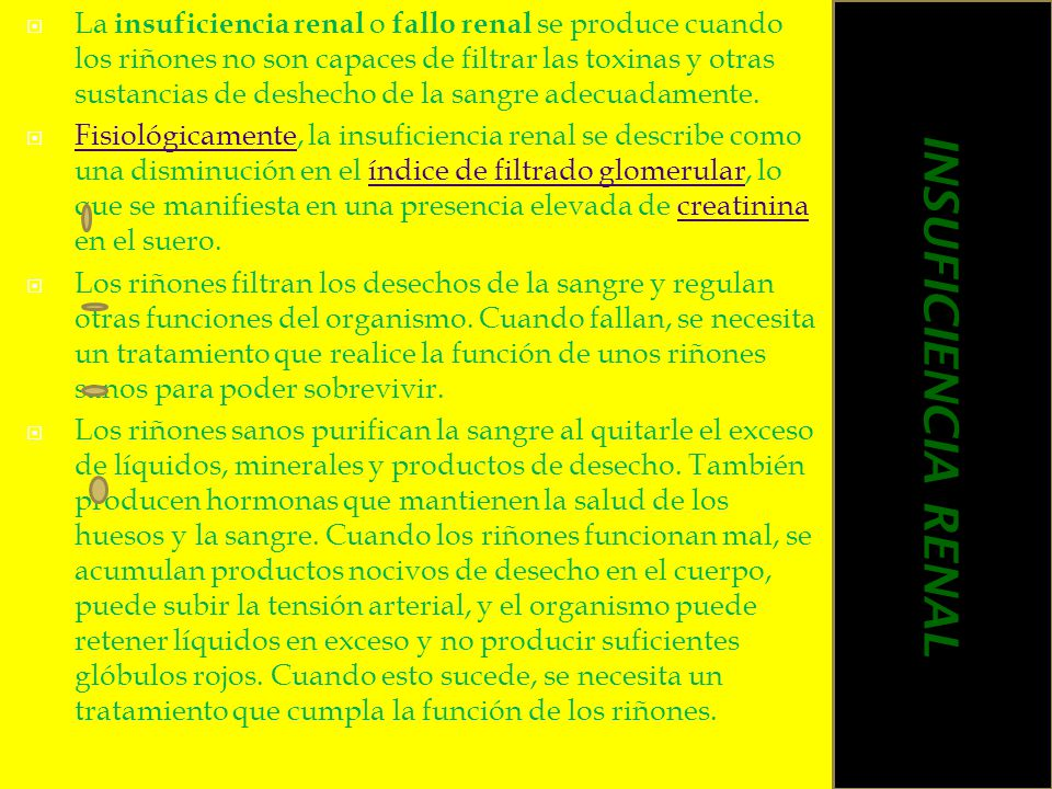 La insuficiencia renal o fallo renal se produce cuando los riñones no son capaces de filtrar las toxinas y otras sustancias de deshecho de la sangre a