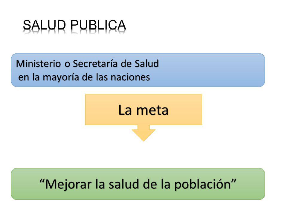 Ministerio o Secretaría de Salud en la mayoría de las naciones en la mayoría de las naciones La meta Mejorar la salud de la población