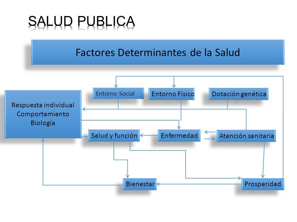 Factores Determinantes de la Salud Respuesta individual Comportamiento Biología Respuesta individual Comportamiento Biología Entorno Social Entorno Físico Dotación genética Salud y función Enfermedad Atención sanitaria Bienestar Prosperidad