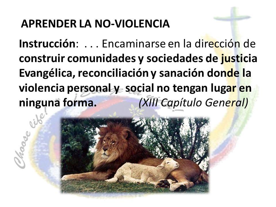 Instrucción:... Encaminarse en la dirección de construir comunidades y sociedades de justicia Evangélica, reconciliación y sanación donde la violencia