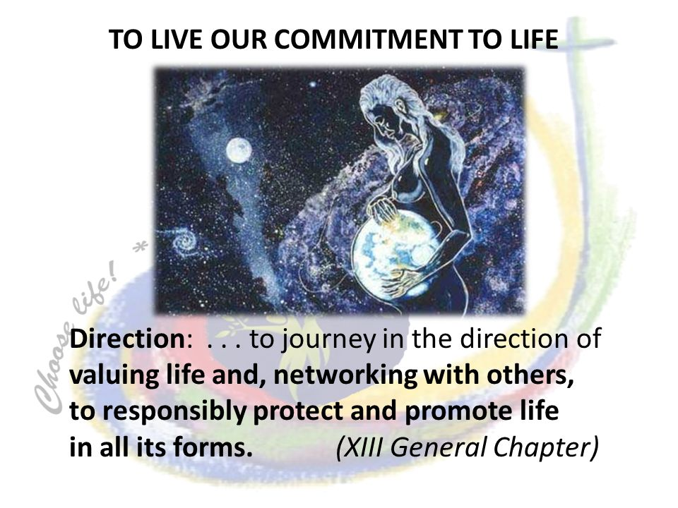 Direction:... to journey in the direction of valuing life and, networking with others, to responsibly protect and promote life in all its forms. (XIII