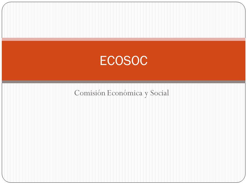 Comisión Económica y Social ECOSOC