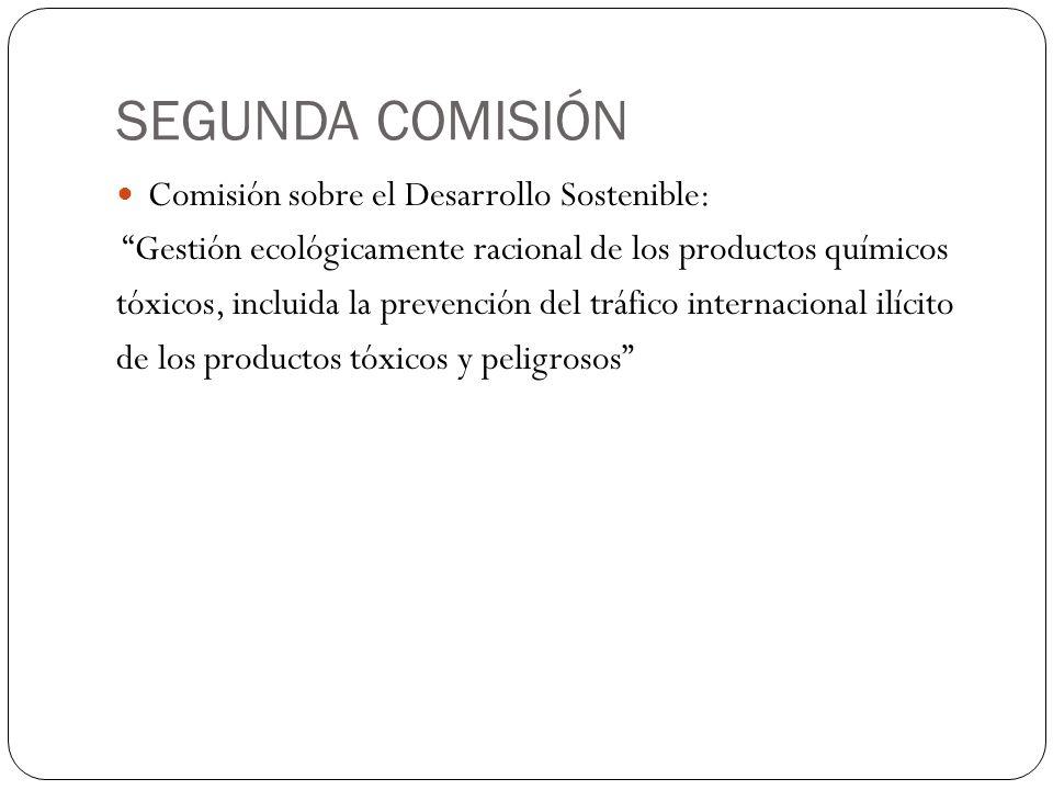SEGUNDA COMISIÓN Comisión sobre el Desarrollo Sostenible: Gestión ecológicamente racional de los productos químicos tóxicos, incluida la prevención de