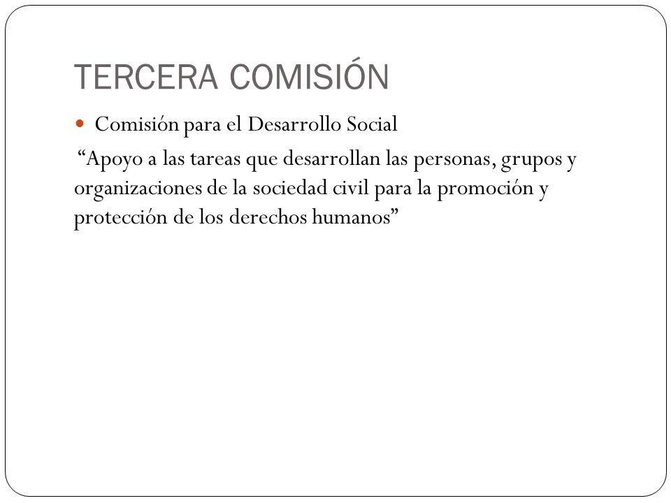TERCERA COMISIÓN Comisión para el Desarrollo Social Apoyo a las tareas que desarrollan las personas, grupos y organizaciones de la sociedad civil para