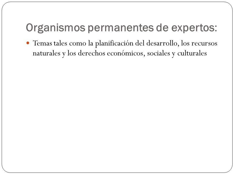 Organismos permanentes de expertos: Temas tales como la planificación del desarrollo, los recursos naturales y los derechos económicos, sociales y cul