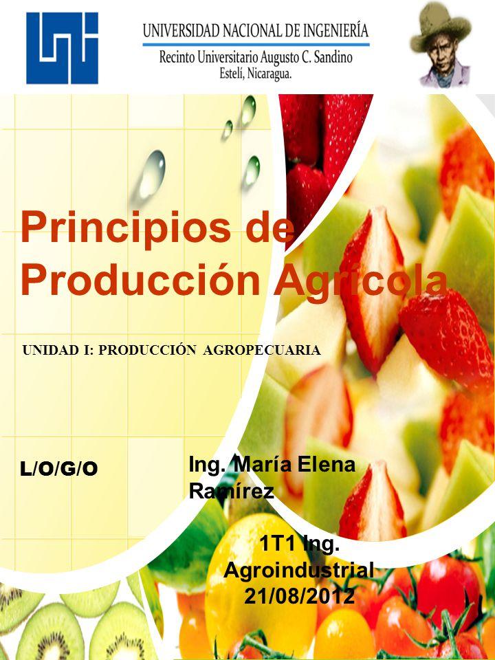 L/O/G/O Principios de Producción Agrícola UNIDAD I: PRODUCCIÓN AGROPECUARIA Ing. María Elena Ramírez 1T1 Ing. Agroindustrial 21/08/2012