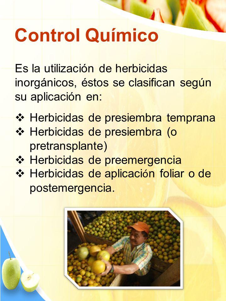 Control Químico Es la utilización de herbicidas inorgánicos, éstos se clasifican según su aplicación en: Herbicidas de presiembra temprana Herbicidas