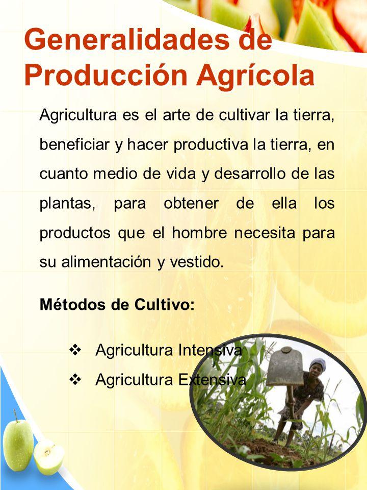 Generalidades de Producción Agrícola Agricultura es el arte de cultivar la tierra, beneficiar y hacer productiva la tierra, en cuanto medio de vida y