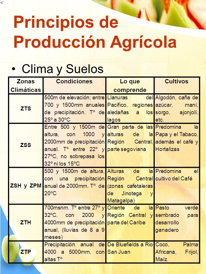 Principios de Producción Agrícola Clima y Suelos Zonas Climáticas Condiciones Lo que comprende Cultivos ZTS 500m de elevación; entre 700 y 1500mm anua
