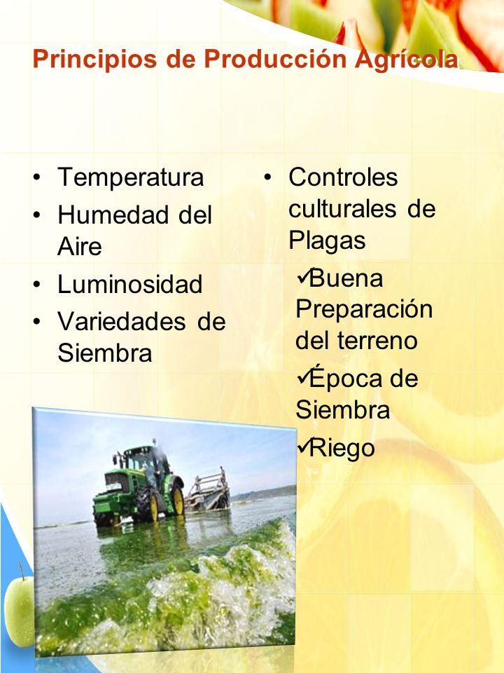 Principios de Producción Agrícola Temperatura Humedad del Aire Luminosidad Variedades de Siembra Controles culturales de Plagas Buena Preparación del