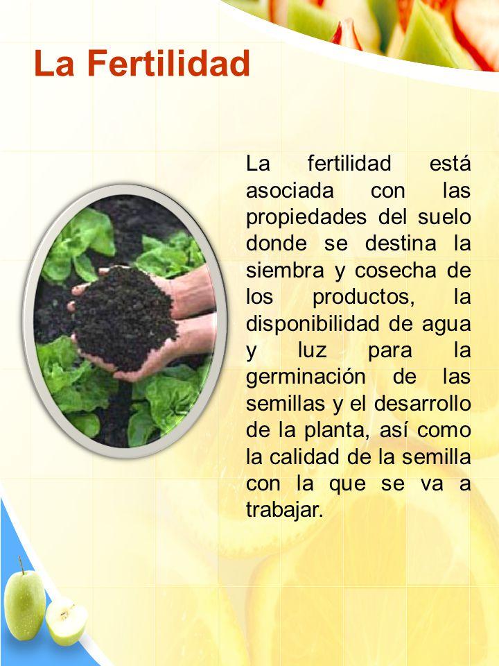 La fertilidad está asociada con las propiedades del suelo donde se destina la siembra y cosecha de los productos, la disponibilidad de agua y luz para