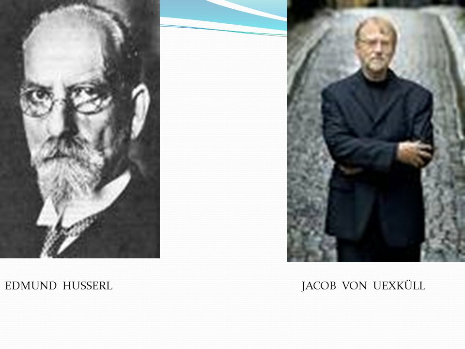 EDMUND HUSSERL JACOB VON UEXKÜLL