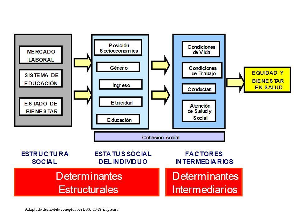 Modelo Socioeconómico de Salud Incorpora a la Inequidad en Salud Salud Publica busca la Equidad en Salud.