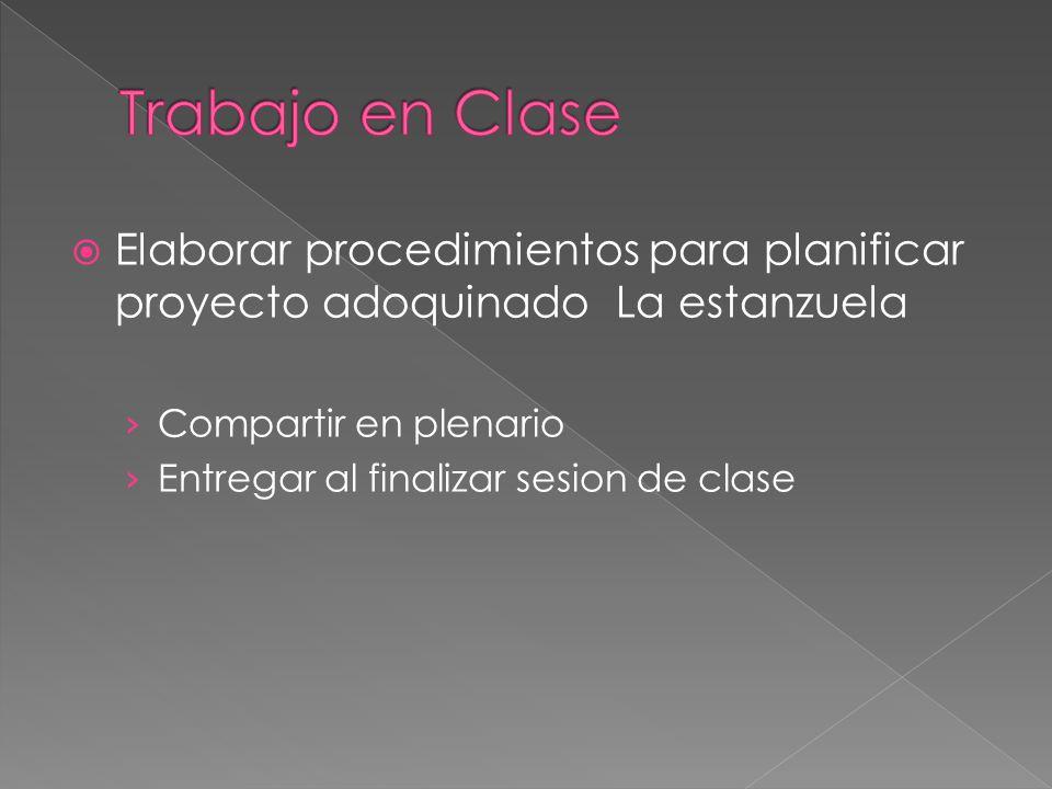 Elaborar procedimientos para planificar proyecto adoquinado La estanzuela Compartir en plenario Entregar al finalizar sesion de clase