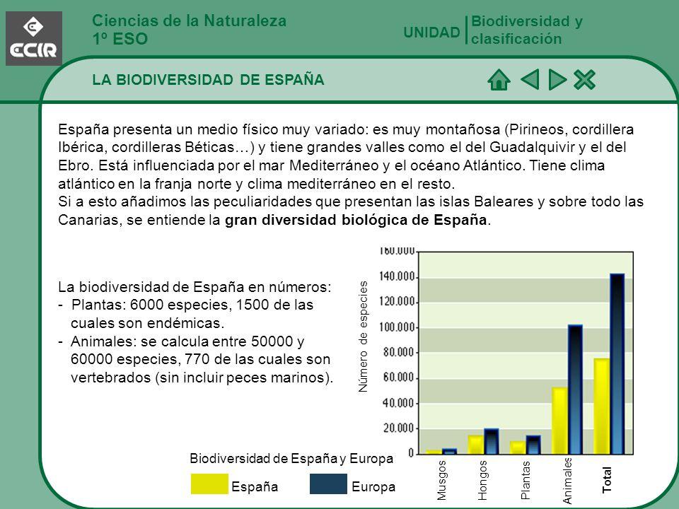 Ciencias de la Naturaleza 1º ESO LA BIODIVERSIDAD DE ESPAÑA Biodiversidad y clasificación UNIDAD España presenta un medio físico muy variado: es muy m