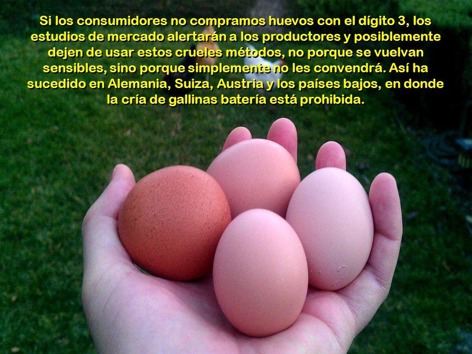Esta presentación no tiene como finalidad inhibir el consumo de huevos, sino dar a conocer una verdad que muchos desconocen y crear conciencia. Si ust