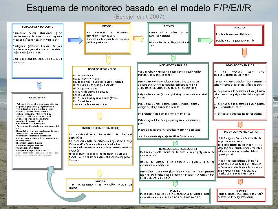 Esquema de monitoreo basado en el modelo F/P/E/I/R (Espejel, et al. 2007)