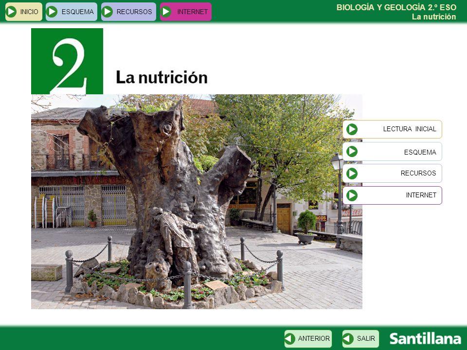BIOLOGÍA Y GEOLOGÍA 2.º ESO La nutrición INICIOESQUEMARECURSOSINTERNET LECTURA INICIAL ESQUEMA RECURSOS INTERNETSALIRANTERIOR