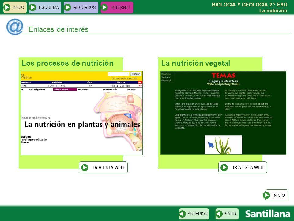 BIOLOGÍA Y GEOLOGÍA 2.º ESO La nutrición INICIOESQUEMARECURSOSINTERNET Enlaces de interés INICIO SALIRANTERIOR Los procesos de nutrición IR A ESTA WEB