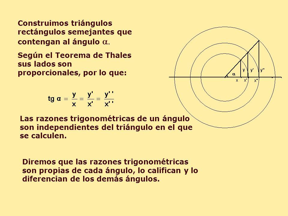 Construimos triángulos rectángulos semejantes que contengan al ángulo Según el Teorema de Thales sus lados son proporcionales, por lo que: Las razones