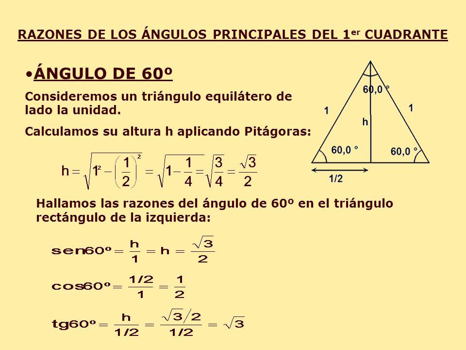 RAZONES DE LOS ÁNGULOS PRINCIPALES DEL 1 er CUADRANTE ÁNGULO DE 60º Consideremos un triángulo equilátero de lado la unidad. Calculamos su altura h apl