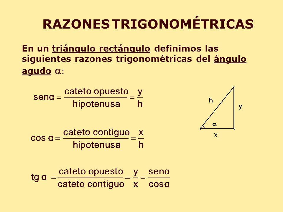 RAZONES TRIGONOMÉTRICAS En un triángulo rectángulo definimos las siguientes razones trigonométricas del ángulo agudo