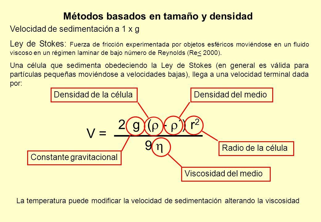 Métodos basados en tamaño y densidad Velocidad de sedimentación a 1 x g Ley de Stokes: Fuerza de fricción experimentada por objetos esféricos moviéndose en un fluido viscoso en un régimen laminar de bajo número de Reynolds (Re< 2000).