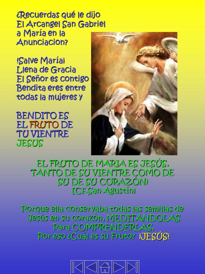 EL SEMBRADOR O EL AGRICULTOR CELESTIAL ES JESÚS LAS SEMILLAS QUE ÉL SIEMBRA EN NUESTROS CORAZONES SON SEMILLAS DE VIDA DIVINA, ES DECIR SON SEMILLAS D