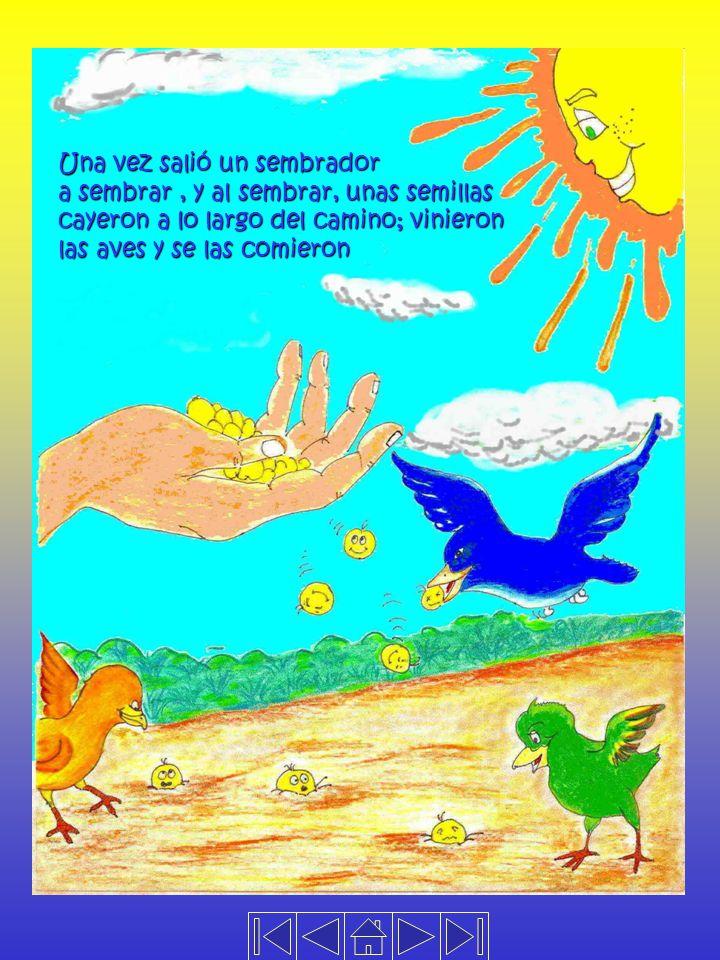 Una vez salió un sembrador a sembrar, y al sembrar, unas semillas cayeron a lo largo del camino; vinieron las aves y se las comieron
