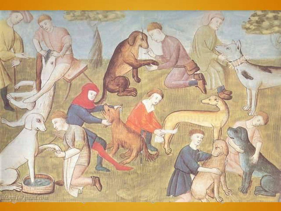 Juzgando por los síntomas que tiene el animal, bien puede estar hidrófobo, bien no lo puede estar, y afirma el gran Hipócrates que el perro en caso tal suele ladrar muchísimo o no suele ladrar.
