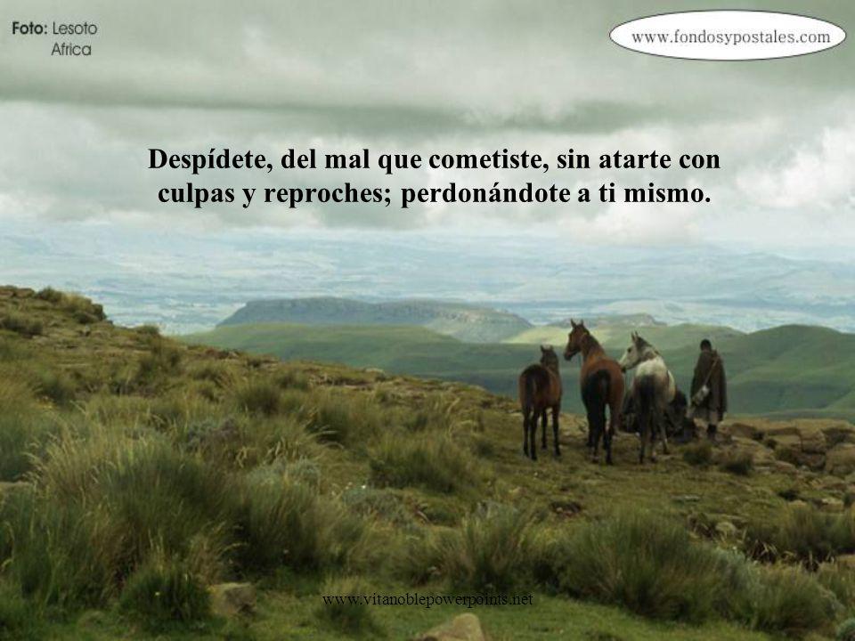 www.vitanoblepowerpoints.net Despídete, de lo bueno que viviste, sin apegarte al tiempo que pasó, por temor del presente y el futuro.