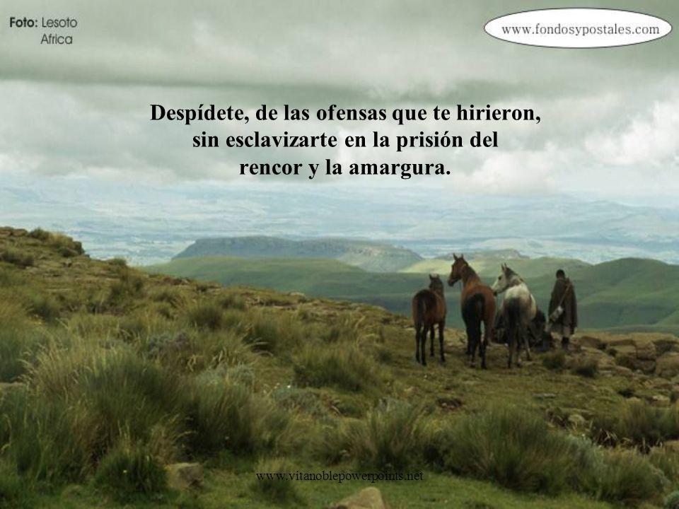 www.vitanoblepowerpoints.net Despídete, del mal que cometiste, sin atarte con culpas y reproches; perdonándote a ti mismo.