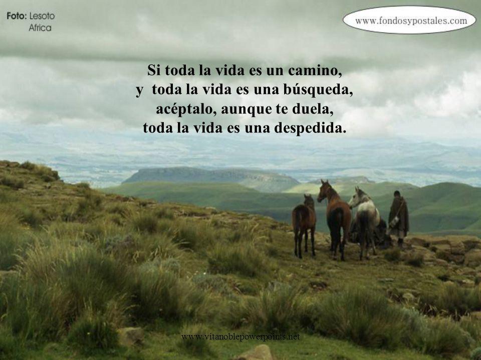 www.vitanoblepowerpoints.net ¡Y lo más triste no es despedir al que parte, sino no saber dónde y para qué te quedas!