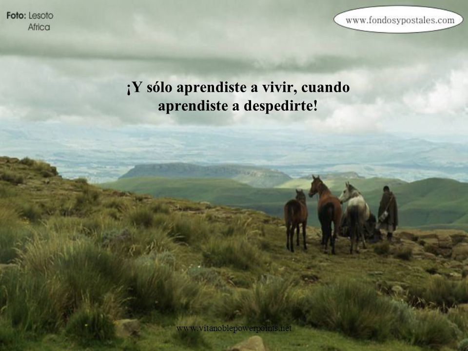 www.vitanoblepowerpoints.net Si toda la vida es un camino, y toda la vida es una búsqueda, acéptalo, aunque te duela, toda la vida es una despedida.