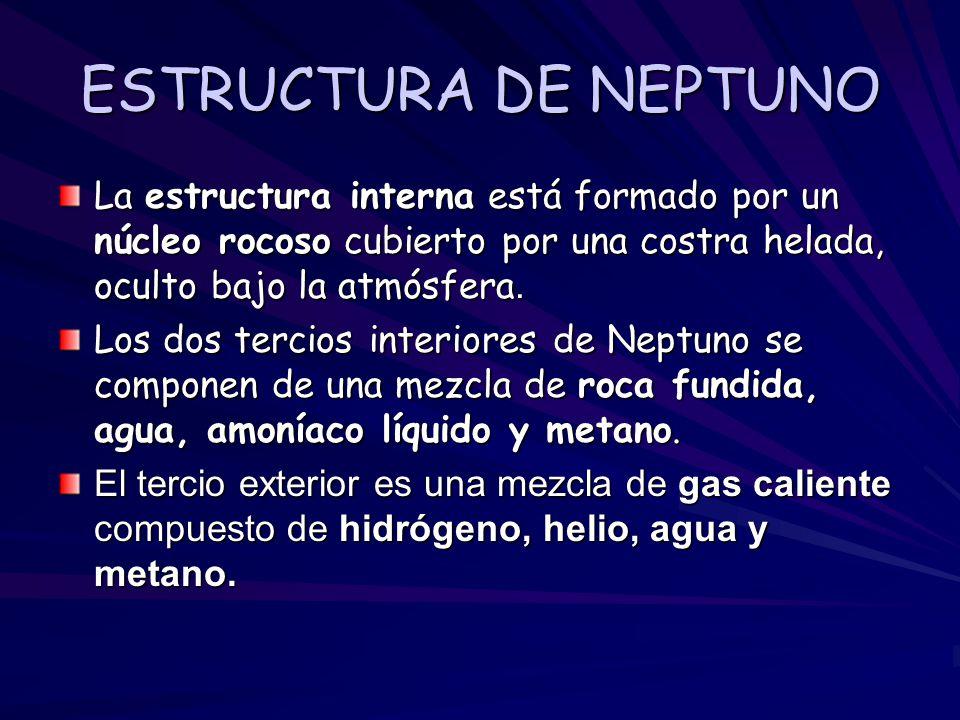 ESTRUCTURA DE NEPTUNO La estructura interna está formado por un núcleo rocoso cubierto por una costra helada, oculto bajo la atmósfera. Los dos tercio