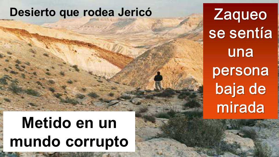 Metido en un mundo corrupto Zaqueo se sentía una persona baja de mirada Desierto que rodea Jericó