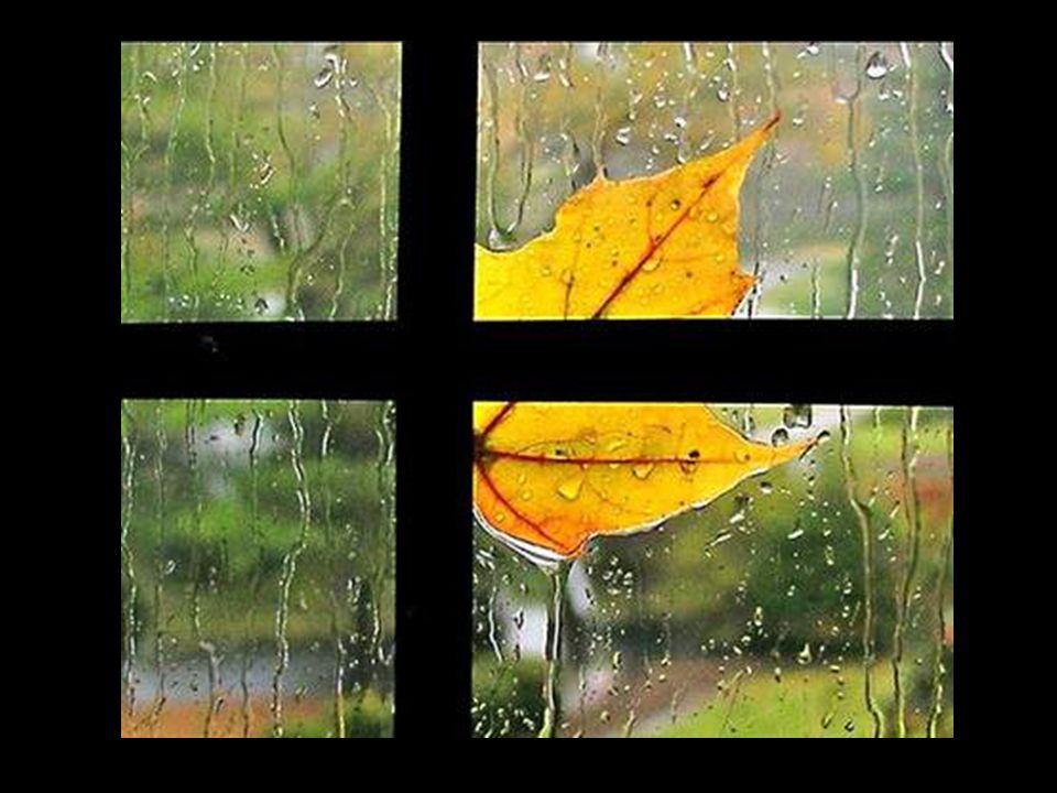 Quítame la vida... pero no tus besos. Róbame la lluvia, pero no me niegues el agua de tu cuerpo.