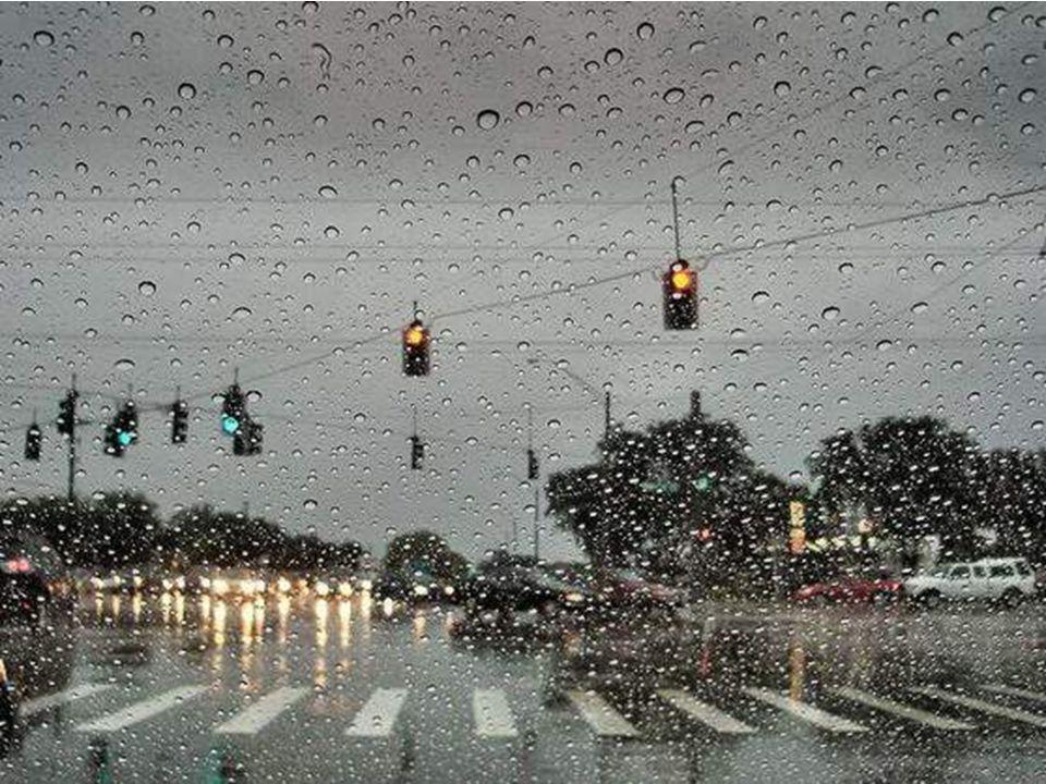 Cuando veo la lluvia caer por mi ventana, parece que llorara conmigo. ¡Como si de mi todo supiera! ¡Como si adivinara mi sufrimiento! No lluvia, no te