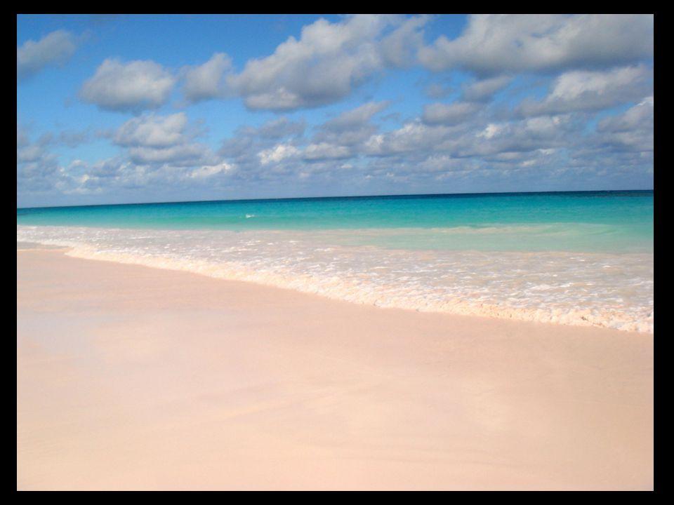 Pink Sand Beach, arenas de color rosa en Bahamas
