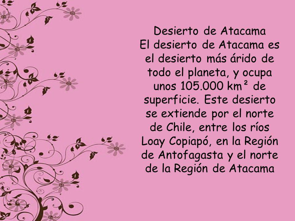 Desierto de Atacama El desierto de Atacama es el desierto más árido de todo el planeta, y ocupa unos 105.000 km² de superficie. Este desierto se extie
