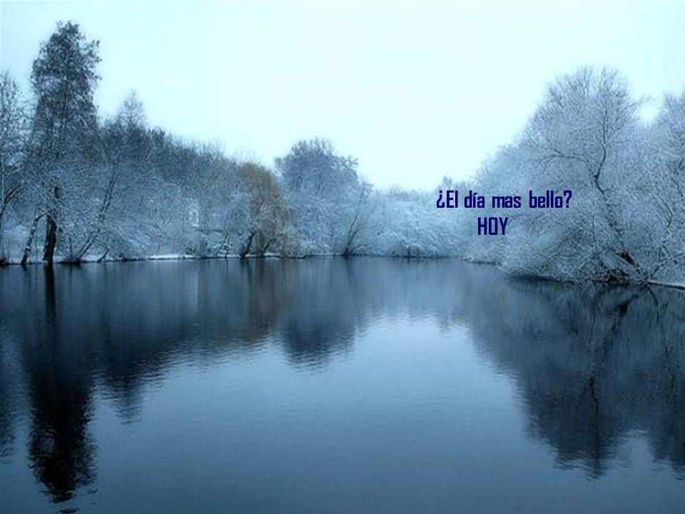 ¿El mayor misterio? LA VIDA
