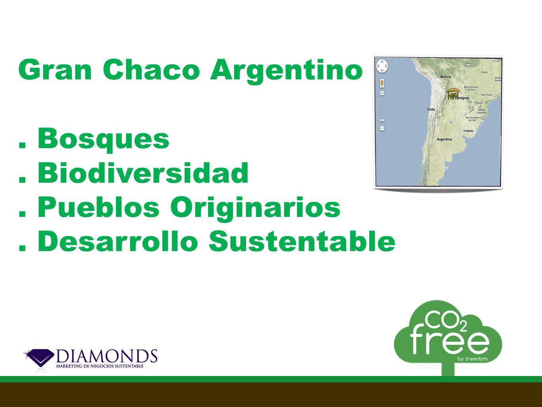 Nuestros servicios green Compensa las emisiones de un producto Regala un árbol a tus clientes Calcula tus emisiones CO2 Campañas de Green marketing Organiza un evento CO2 neutral Respeto por el MedioAmbiente Sostenibilidad Diferenciador de Marca