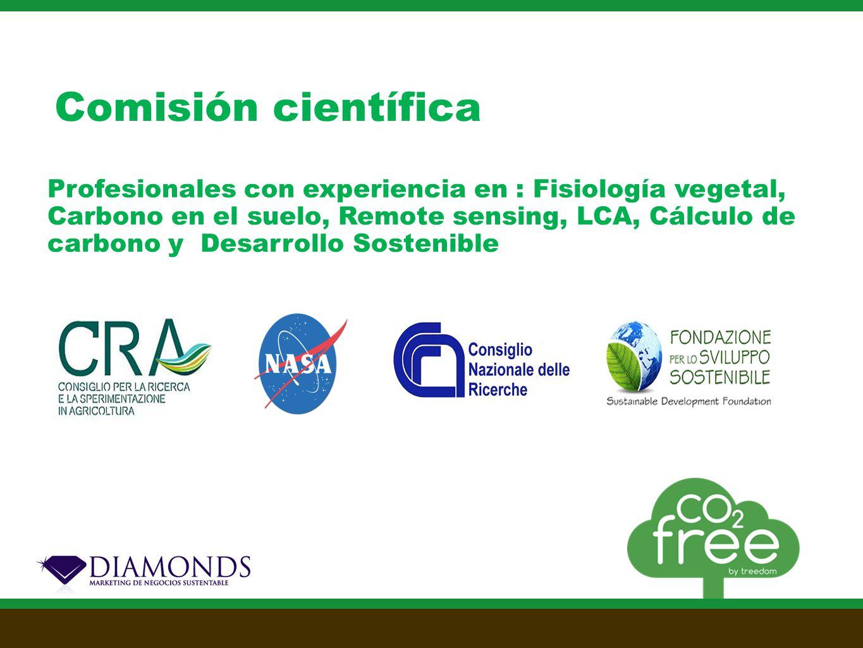 Profesionales con experiencia en : Fisiología vegetal, Carbono en el suelo, Remote sensing, LCA, Cálculo de carbono y Desarrollo Sostenible Comisión científica