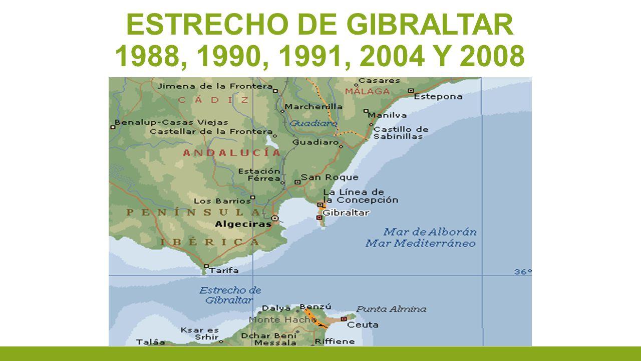 ESTRECHO DE GIBRALTAR 1988, 1990, 1991, 2004 Y 2008